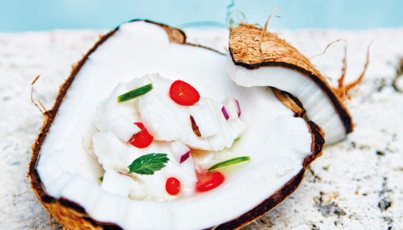 Ceviche af hogfish med jalapenos og kokos