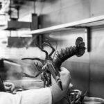 Kokkekunst & kaffebønder