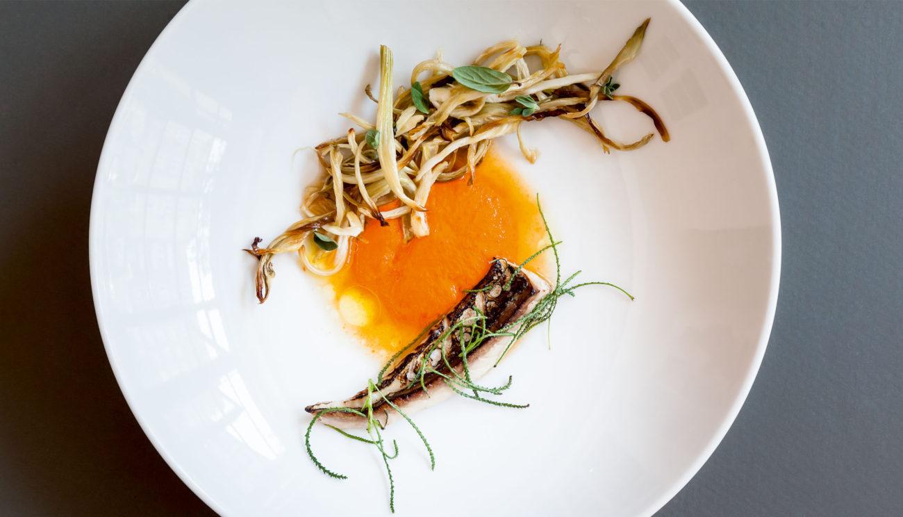 Makrel med salsa rossa og karamelliseret fennikel