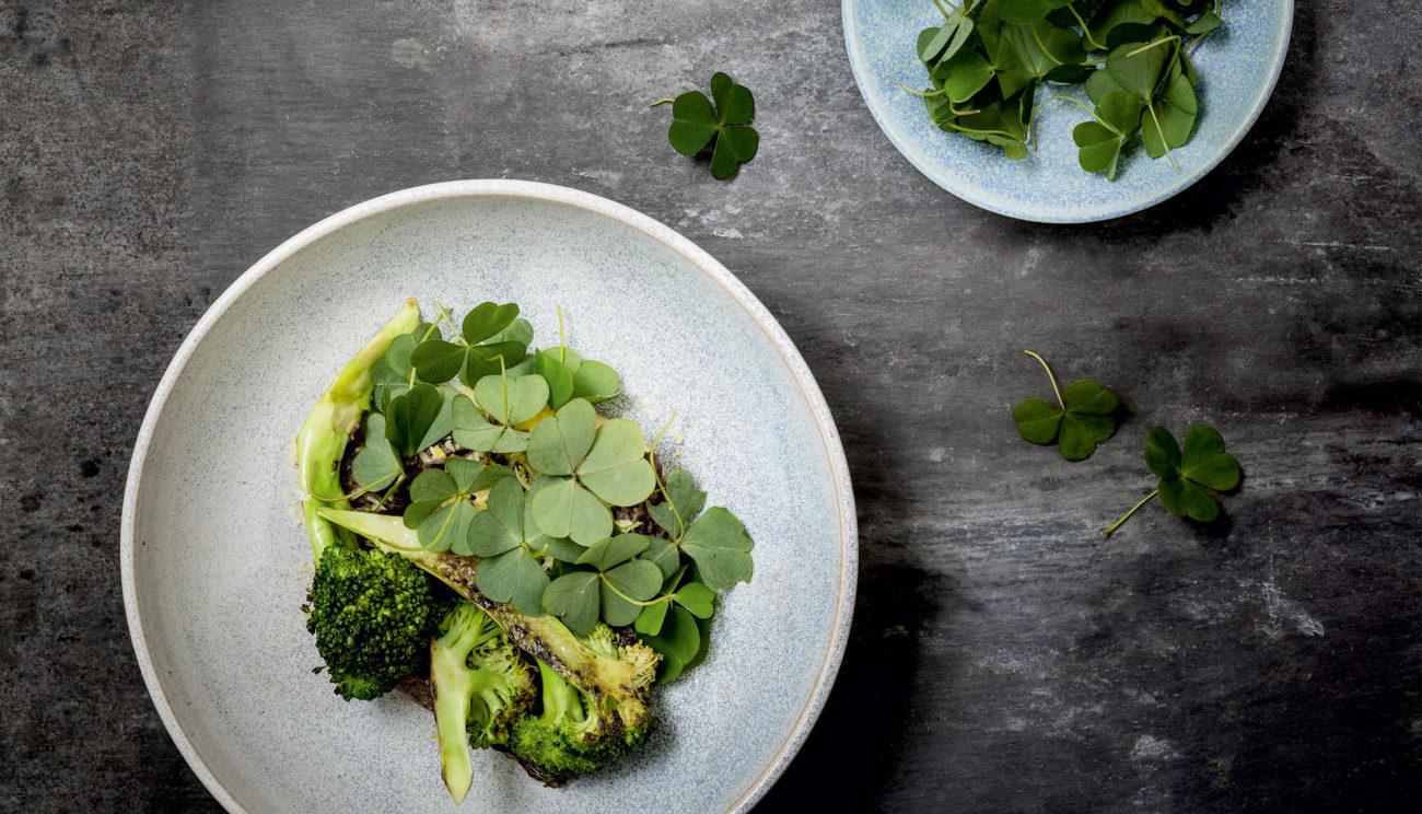 Svinekæberagout, broccoli og pastinak