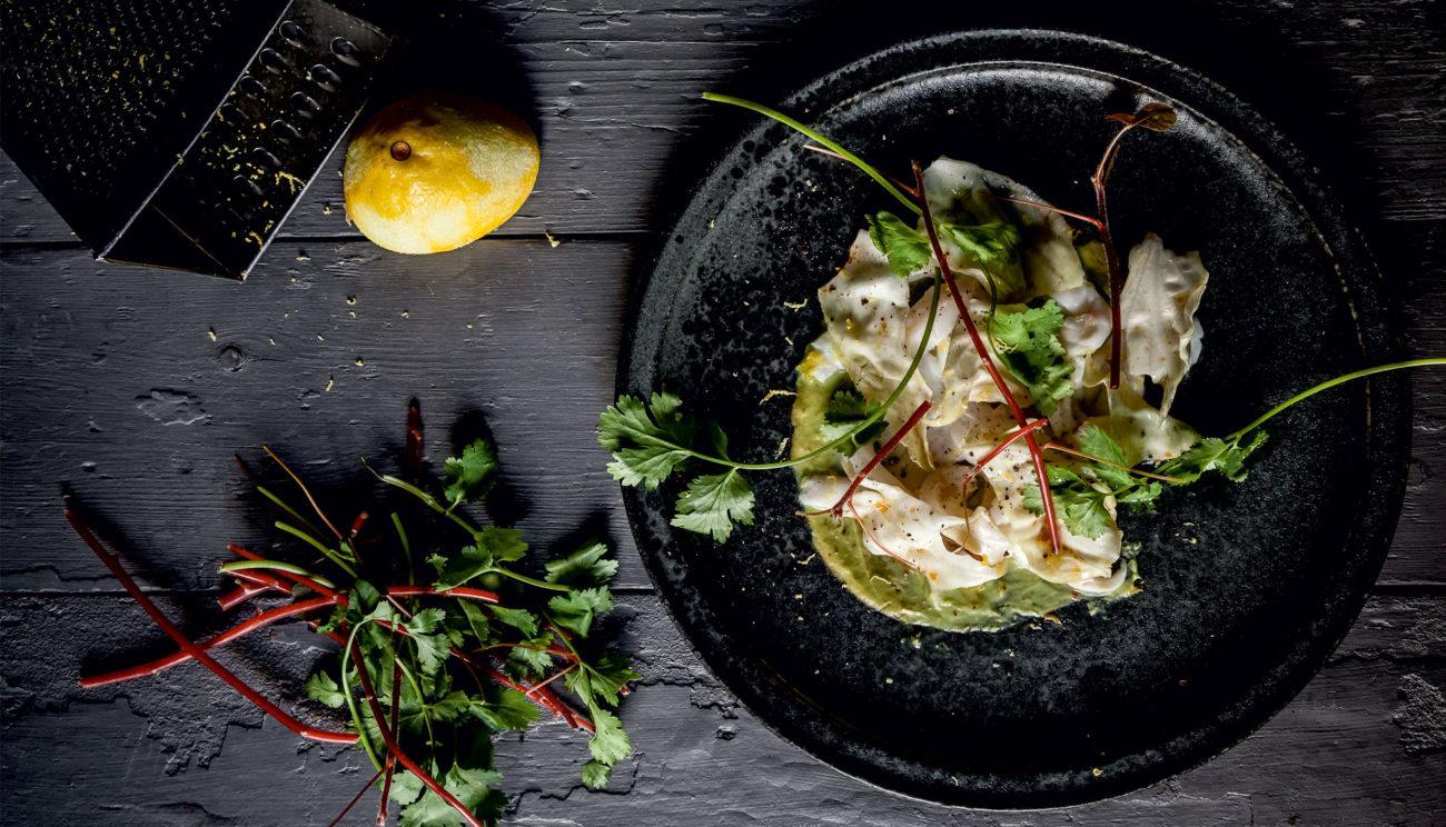 Ceviche af havtaske, koriander, avocado og spidskål
