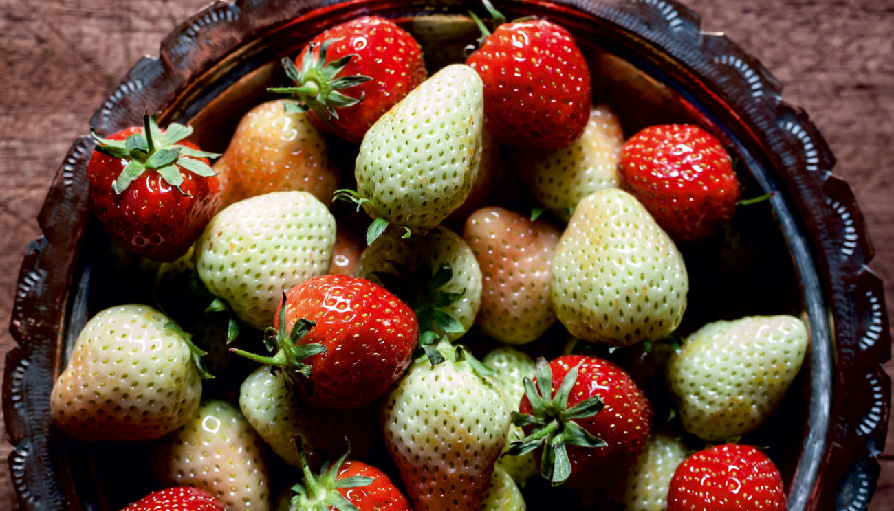 Jordbær & krydderurter
