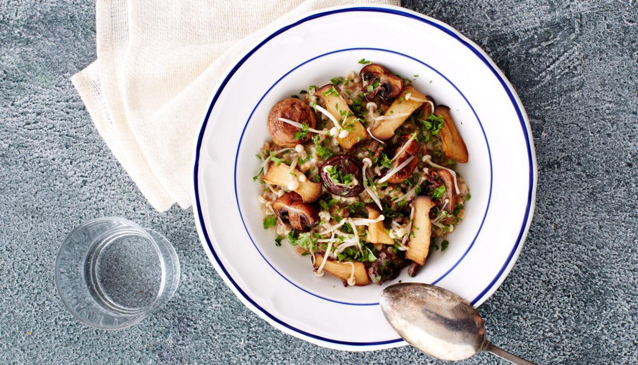 Cremet perlespelt med persille og stegte svampe