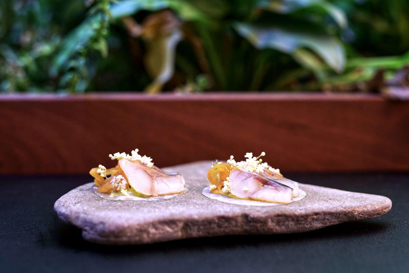 Saltet makrel, ponzu og syltet glaskål