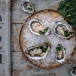 Østers- og seafoodsafari