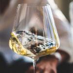Københavns 5 bedste vinbarer