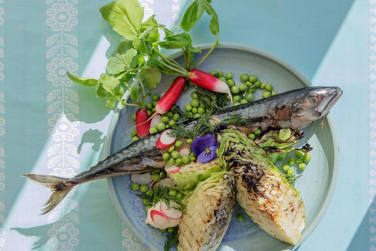 Grillet makrel med spidskål og rygeostecreme